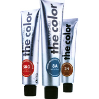 EL COLOR - PAUL MITCHELL